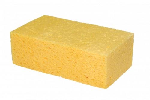 Губка желтая